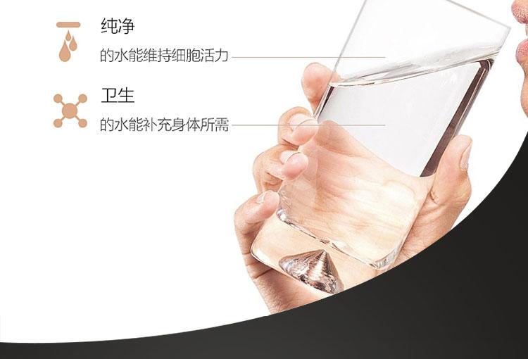 盛唐伟业纯水机,400G纯水机